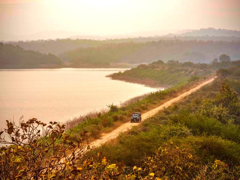 Gir Wildlife National Park