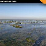 Narara Marine National Park Jamnagar