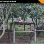 Pradhyuman Zoological Park Rajkot